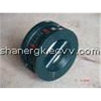100h Butterfly Type Check Valve with Double-Disc