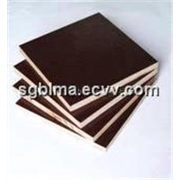 21mm Poplar Film Faced Plywood for Building