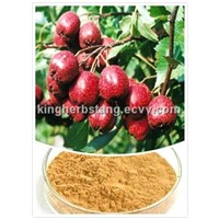 China Hawthorn Berry Extract