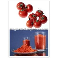 China Lycopene Tomato extract