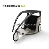 2 seats electric tourist car