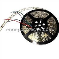 3528 SMD LED Strip Light with 30LED/m and 12/24V DC Working Voltage