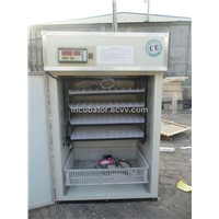 CE Compliant Small Incubator for Chicken YZITE-6