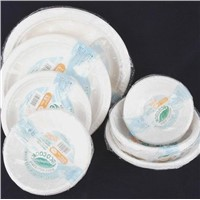 Disposable food trays with lid