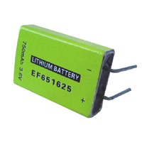 EF651625 Primary Li-SOCl2 Battery with High-energy Type, 3.6V Voltage and 750mAh Capacity