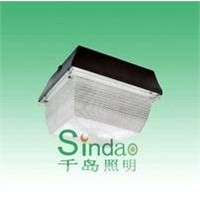 Induction Lamp-Ceiling Lamp (SD-CL-601)