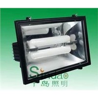 Induction Lamp, Floodlight (SD-FL-304)