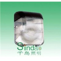 Induction Lamp, Wall Light (SD-WL-501)