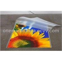 PET Laminating Pouch Film