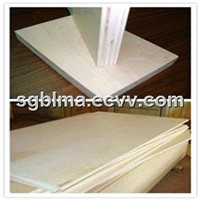 1220*2440*12mm MR Birch Plywood
