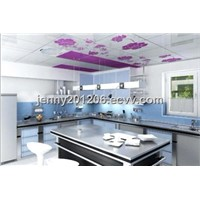 Ceiling Decorative Stainless Steel Panel