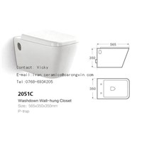 2051C Washdown Wall hung Toilet
