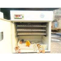 264 Eggs Chicken Incubator For Sale