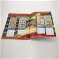 Custom matt/glossy lamination Promotional Color Booklet Printing with glue binding for ads