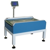 Online Weighing System CW-N500 for heavy duty products