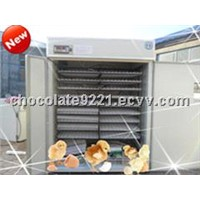 Professional Competitive Price Egg hatching Machine