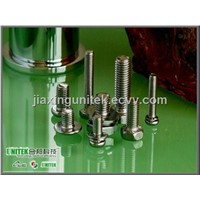 SS 304 Stainless Steel Bolts and Sems Screws