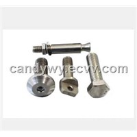 Casting Stainless Steel Bolt/Screw