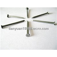 polished/ galvanized / round flat iron wire nails