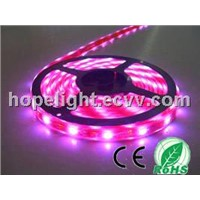 30LEDs/M 5050 Waterproof LED Strip Light