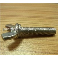 Butterfly Screw / Pan Head Torx Screw
