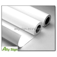Eco-solvent pp paper