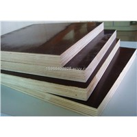 Red/brown/black Film Faced Plywood