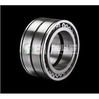 Spherical double row full complement roller bearing