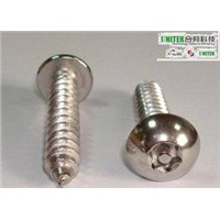 SUS 304 Tamper Proof 6 LOBE With PIN PAN Head Sheet Metal Screw