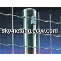 Weldmesh Fencing Holland Mesh 50.8*50.8mm Mesh Size (SGS Certificate)