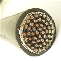 450/750V~0.6/1kV,Flame-retardant Cu/XLPE insulated and sheath steel tape armoured control cable