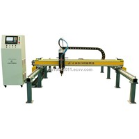 DSG Series Economic (Little Hasee) Gantry Cutting Machine Type 2000/3000