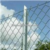 Galvanized Chain Link Fence with Competitive Prices