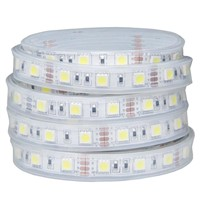 DALights 12W DC12V/24V IP65 Waterproof Flexible LED Strip Lights Manufacturer(DAF2-1206-LE2B)