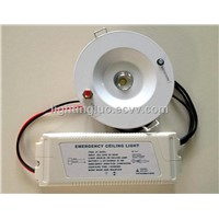 Emergency Ceiling Light/Emergency Walkway Light