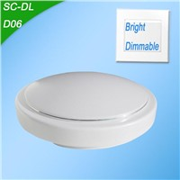 LED Bright Ceiling Light
