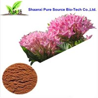 Rhodiola rosea extract for cosmetic raw materials