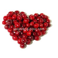 Sell Cranberry Extract Powder