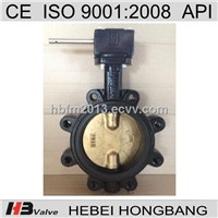Warm Gear Operated Lug Type Cast Iron Butterfly Valve