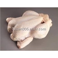 Halal Frozen Whole Broiler Chicken