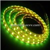 LED Rope Light 5050SMD LED Ribbon Lighting 12V/24V
