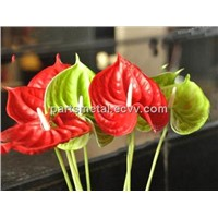 real touch flower PU anthurium