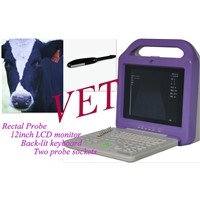 CE Approved Portable Veterinary Ultrasound Scanner (VETXK21355 LCD)