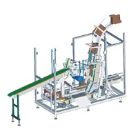 Case Packing Machine for Pouch