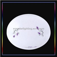 ESCE-20C LED Ceiling Lamp 20W Indoor Lighting