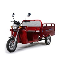 LM-S007  electric tricycle