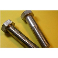 Supplier Hex Bolts With Nuts And Washers 4.8 Grade