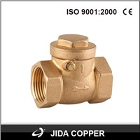 brass swing check valve female