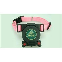 dog collar with built in leash