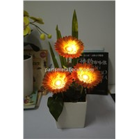 solar power LED African daisy
